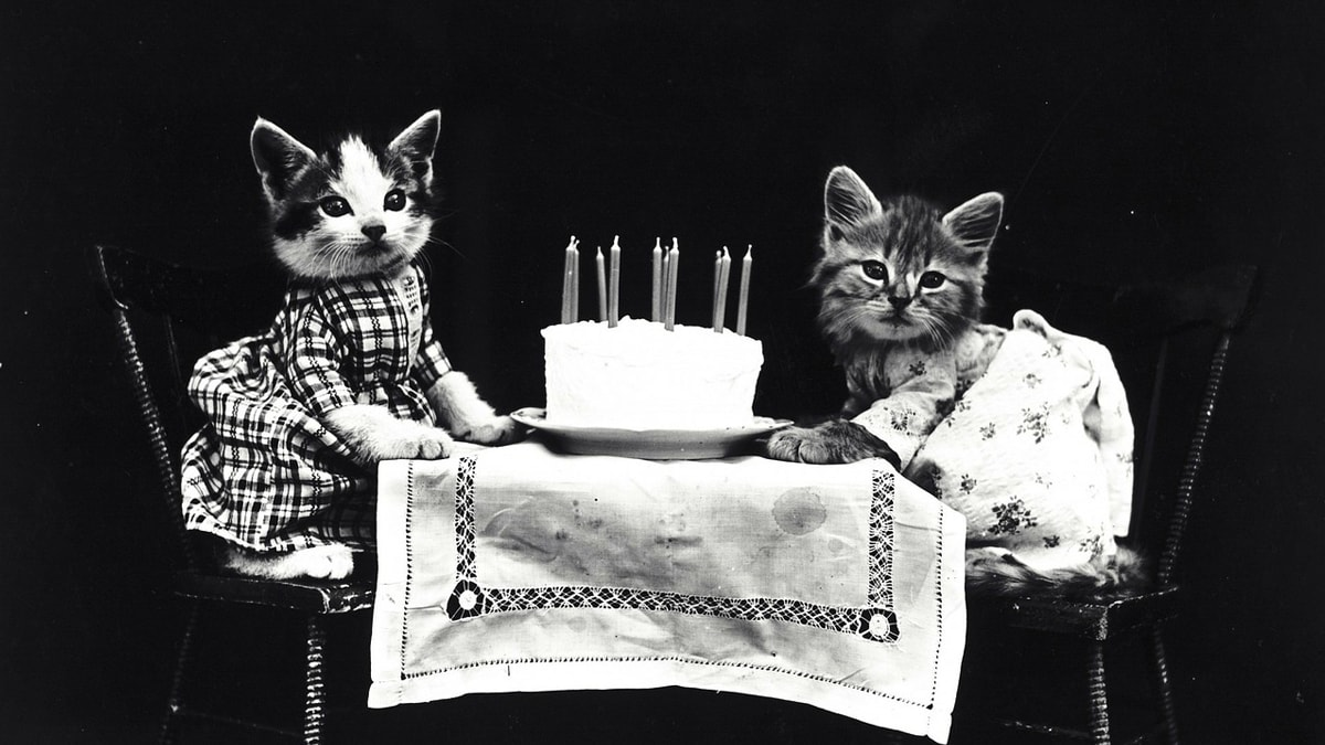 ¡Feliz cumpleaños Monse!